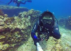 Sea of Cortez Dive Expedition - Panterra Eco-Expeditions