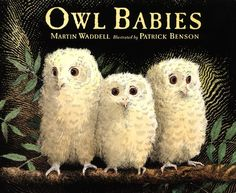 Owl Babies by Martin Waddell, illustrated by Patrick Benson, is a classic children's picture book. A timeless story that children can relate to, with stunning illustrations. Owl Babies Book, Board Books For Babies, Baby Owls, Best Children Books, Childrens Books, Young Children, Toddler Books, Helping Children, Toddler Fun