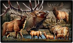 American Elk Collage Series Tempered Glass Cutting Board