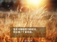 A Megoldás avagy az élet kulcsai - Az érzések szerepe a teremtésben