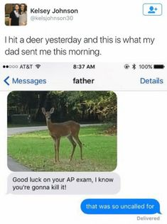 I Hit A Deer Yesterday And This Is What My Dad Sen. ~ Memes curates only the best funny online content.