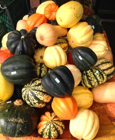 What kind of autumn would it be without squash?