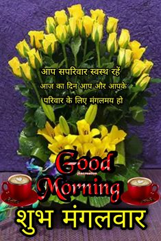 Good Morning Flowers Pictures, Good Morning Roses, Good Morning Images, Flower Pictures, Have A Blessed Day, Beautiful Bollywood Actress, Sad Quotes, Beautiful Landscapes, Nature Photography