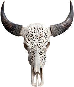 cow_bone_skull.png 270×317 pixels
