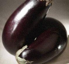 Eggplant pests