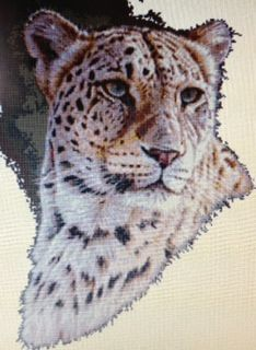 044Persian Leopard 189W x 257H.Counted cross stitch.Pattern $30.00,Kit $40.34.Kits are customized.Kit includes instructions,pattern,pre-sorted thread,cloth in colour of choice(white,ivory,grey,black,oatmeal,dark blue,light blue,red)and in a choice of 14 count,16 count or 18 count.Available for purchase by emailing me @ sgentes1@gmail.com with your interested projects and you will be invoiced via PayPal where purchases can be paid for.Www.facebook.com/Shannon's Patterns & Kits