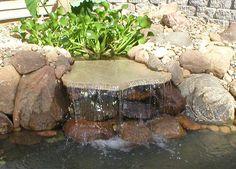 1000 images about pond bog filter ideas and designs on for Bog filter construction