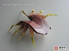 origami spider 11