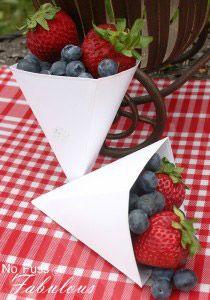 nffberry-cones-copy