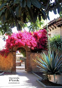 Fantastic Spanish hacienda decorating color drawn from nature.. hacienda pink