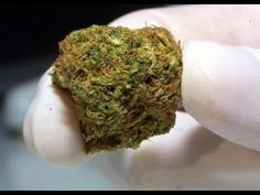 Compound found in marijuana shown to 'turn off' cancer metastasis. Scientists at California Pacific Medical Center said that  CBD, the non-psychoactive component of cannabis is the compound.