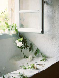 Such beautiful lighting. Ginny Au European Workshop Part II White Cottage, Rose Cottage, Deco Nature, Foto Art, White Gardens, Plantar, White Roses, White Flowers, Floral Arrangements