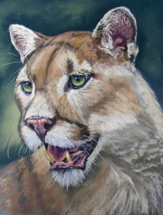 This incredible portrait of a panther was painted in pastels by Cath Inglis. Find out how to paint it for yourself now on ArtTutor.