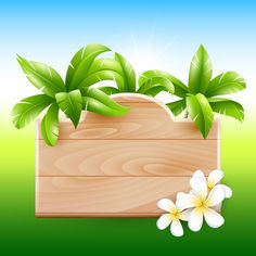 Coconut tree and Wooden Boards vector 05 - Vector Other free download