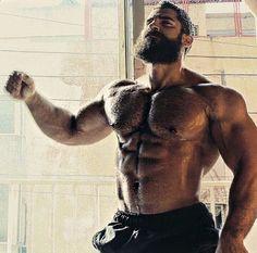 Doumit Ghanem - Big male pecs