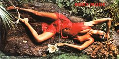 Bryan Ferry & Roxy Music - Stranded (the entire album cover)
