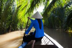 Women paddling boat in swamps in Mekong Delta. Mekong Delta, Rich Image, Music Licensing, Video Footage, Photo Library, Royalty Free Images, Vietnam, Boat, Stock Photos