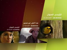 Promoflow for the Iraqi TV channel Albaghdadia (a full program with an emphasis on the social issues of the spectators) including openers, closers, packshots, in-program-promotions, creditpages and sponsorframes for the 3 genres infotainment, news, entertainment and a special ramadan version.  An arabic version of Parachute´s PF Square was especially designed for albaghdadia by Panos Vassiliou to match the needs of a consistent type-face in latin and arabic and which also guarantees ...