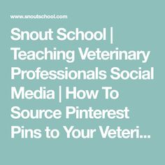 Snout School | Teaching Veterinary Professionals Social Media | How To Source Pinterest Pins to Your Veterinary Website