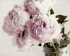 Peony Print, Peony Wall Art, Peony Decor, Peony Print, Cottage Chic Decor, Bedroom Decor, Pink Peony, Flower Photography, Floral Print