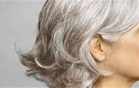 Short Hairstyles For Gray Hair - Bing Images