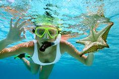 snorkel like you never belonged on land  via places on line