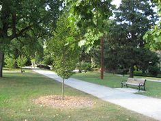 Providence RI - Blackstone Blvd Park