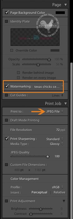 Making a text watermark in LR.