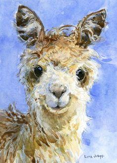 Alpaca by Lita Judge