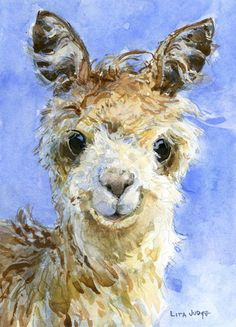 Alpaca by Lita Judge Adorable! Alpacas, Painting & Drawing, Watercolor Paintings, Original Paintings, Watercolors, Animal Paintings, Animal Drawings, Lama Animal, Llama Arts