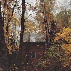 Today's Fall crave via @tombonamici. #Todayscrave