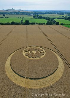 My personal favorite of all crop circles I've seen so far.