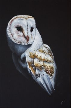 Owlfred by Andrea Meakin Black Canvas Paintings, Bird Paintings, Bird Drawings, Pet Portraits, Animal Photography, Painting & Drawing, Wildlife, Owl, My Arts