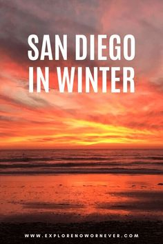 california travel tip Heading to San Diego in winter From whale watching and Korean massage to wine tasting and hiking, this guide by a local shares the very best activities. San Diego travel Things to do in San Diego California Attractions, California Travel Guide, California Vacation, San Diego Vacation, San Diego Travel, Cool Places To Visit, Places To Travel, Travel Things, Travel Destinations