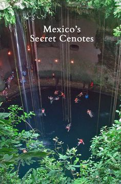 Discover Mexico's Secret Cenotes on the Yucatan Peninsula