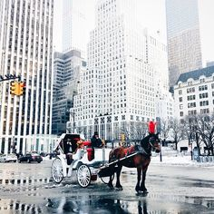 horse and carriage ride - you can do this in NYC