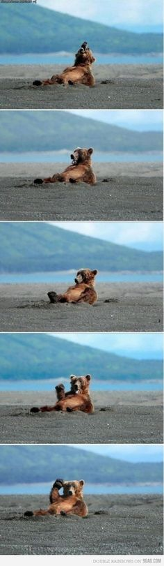 Oh, hey! I was just napping on the beach.....