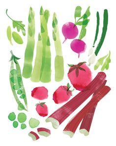 Saisonale Ernte druckt Set 4 8 x 10 von redcruiser auf Etsy
