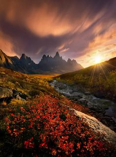 Image: Powerlight : Ogilvie Mountains, Yukon, Canada : Marc Adamus ...