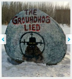 """Oh my: """"Should Punxsutawney Phil pay the ultimate price for predicting an early spring?"""" The story's headline is: Ohio Prosecutor Seeks Death Penalty for Famous Groundhog"""