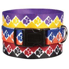 DoggieVogue, Inc.  Inexpensive puppy collar?