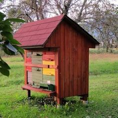 Lately there has been plenty of buzz over new types of beehives becoming available in the United States. It is no secret that many beekeepers are looking for better ways to keep bees, better ways to ensure the hive's long-term survival, and better ways to house hives, with improvements to their ergonomic design.. I was […]