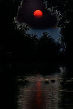 and moonlight and la luna Blood Moon Lunar Eclipse, Shoot The Moon, Moon Pictures, Red Moon, Orange Moon, Dark Moon, Beautiful Moon, Super Moon, Stars And Moon