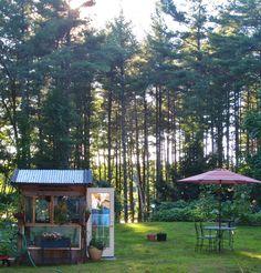 Beatrice Euphemie: Donna's Garden, continued......