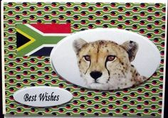 A touch of Africa on Craftsuprint designed by Gail Collins - made by Hilary Shemmans - Lovely African Cheetah was Cup 377073 by Gail Collins , I printed onto high gloss photo paper , I then decoupage and put onto cream card. - Now available for download!