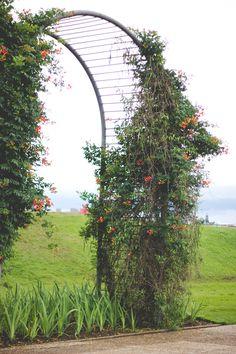 Jardim Botânico-Curitiba-Pr  Melina Souza - Serendipity <3  http://melinasouza.com/2015/10/14/blue-happy-flowers/  #look #FOREVER21 #TutuAteliedeSapatilhas