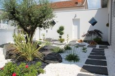 "Search result for ""mineral gardens"" - Do Garden Low Water Landscaping, Pinterest Garden, Modern Garden, Modern Landscape Design, Exterior, Small Garden, Garden Bedding, Gravel Landscaping, Home And Garden"