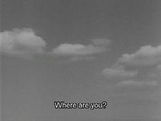 ~ same sky, separate souls ~