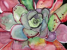 Pink Succulent Agave Painting by Fei Liu - Pink Succulent Agave Fine Art Prints and Posters for Sale
