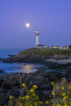 ~~Super Moon - Pigeon Point Lighthouse ~  Pescadero, California by Darvin Atkeson~~  #famfinder
